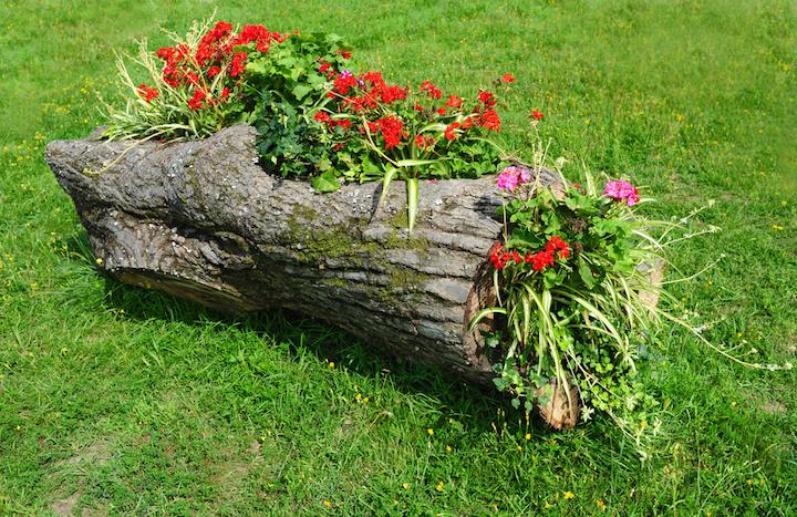 Поделки с дерева на клумбы