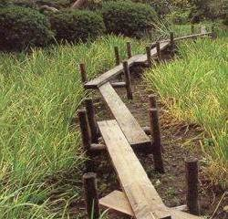 Дачные дорожки из дерева могут устанавливаться на сваи