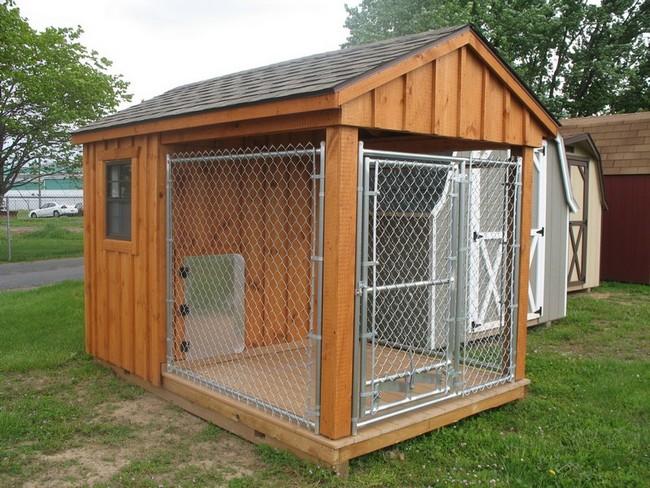 Фото- дом для собаки.