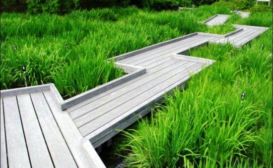 Фото элегантной деревянной дорожки на загородном участке