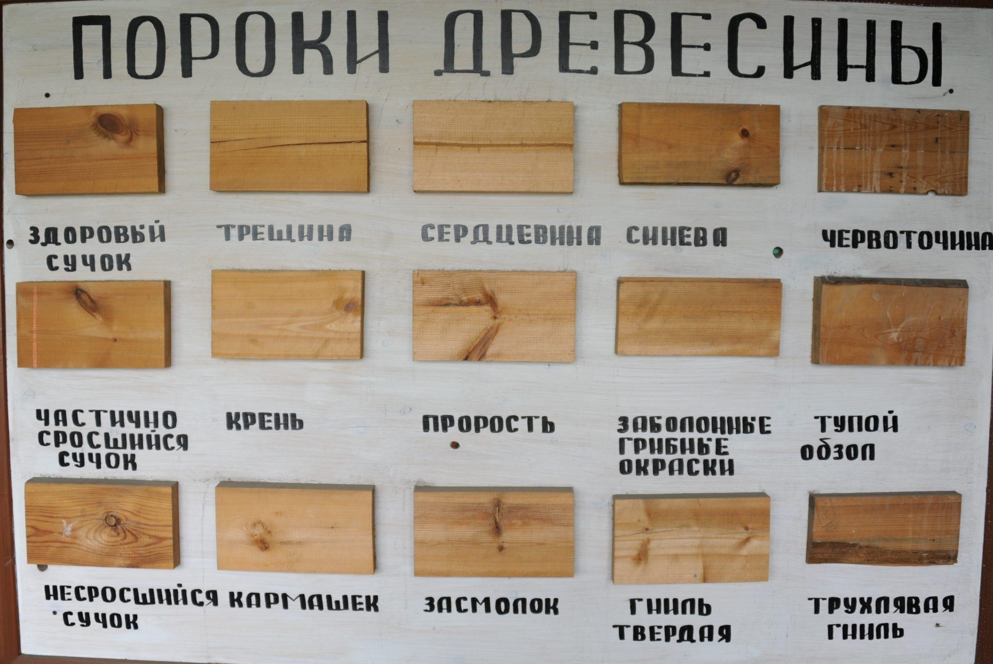 Фото некоторых видов дефектов