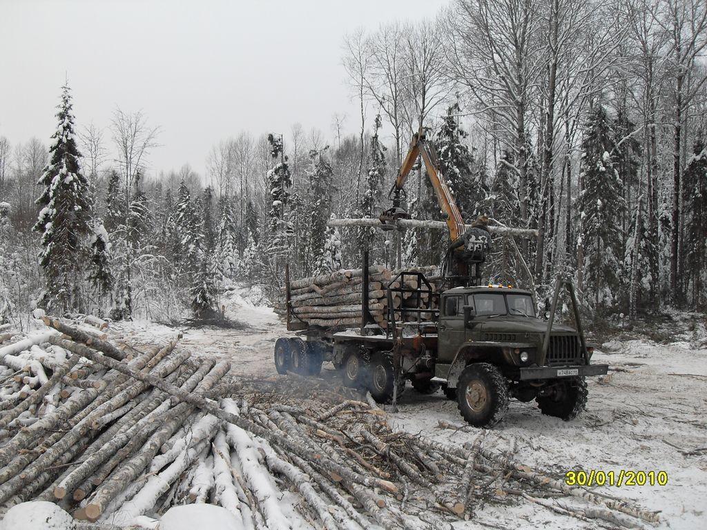 Фото зимней лесозаготовки