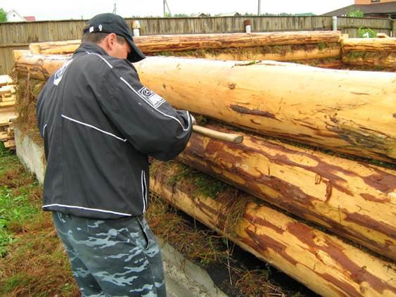 Иногда прокладка бревенчатым «герметиком» производится на этапе возведения строения (как это показано на фото)