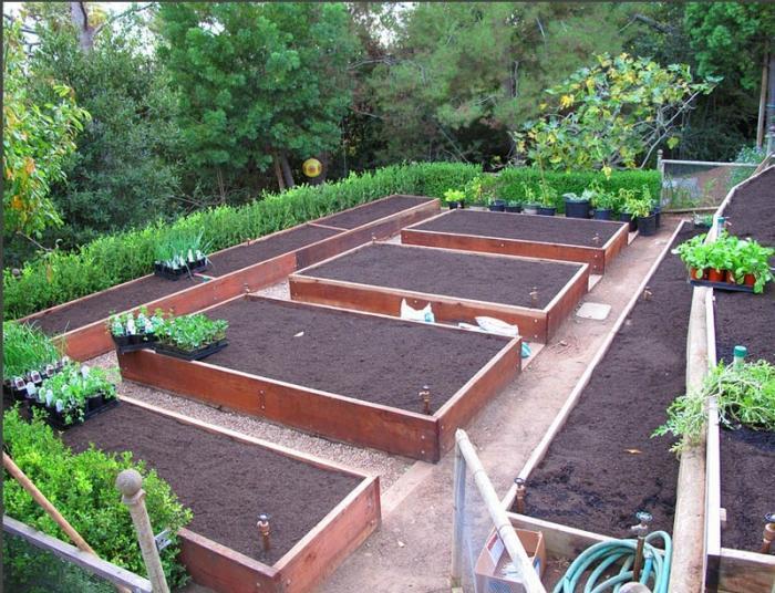 Использование рассматриваемого вида конструкций позволяет добиться идеального порядка в огороде