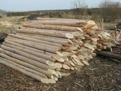 На фото показаны заготовки для деревянных столбов.