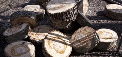 Некоторые мастера предпочитают не снимать кору с древесины, поскольку она создает своеобразный внешний вид, но тогда нужно производить более внимательный осмотр и тщательную обработку