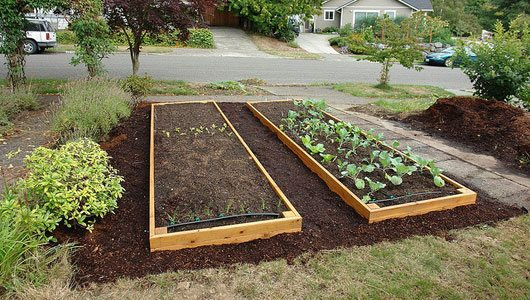 Невысокие конструкции подходят там, где почва хорошая