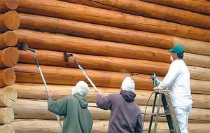 Окрашивание дерева выполняет не только декоративные, но и защитные функции.