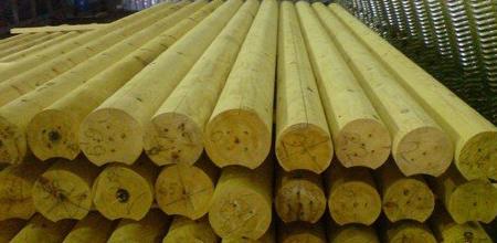 Пиломатериалы из осины – лучший продукт для строительства и внутренней отделки бань