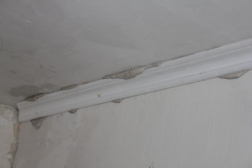 Посаженный потолочный плинтус на шпаклевку
