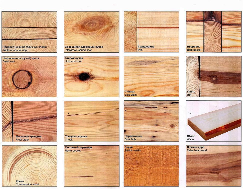 Примеры различных пороков, которые могут быть у древесины