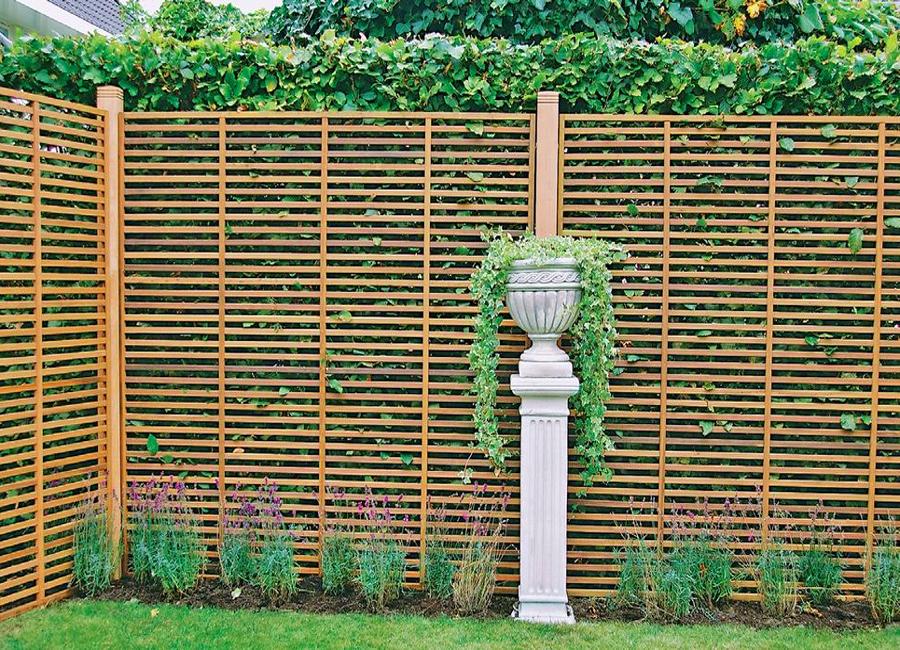 Решетчатая изгородь – не такая надежная, но зато обеспечивающая максимальное освещение
