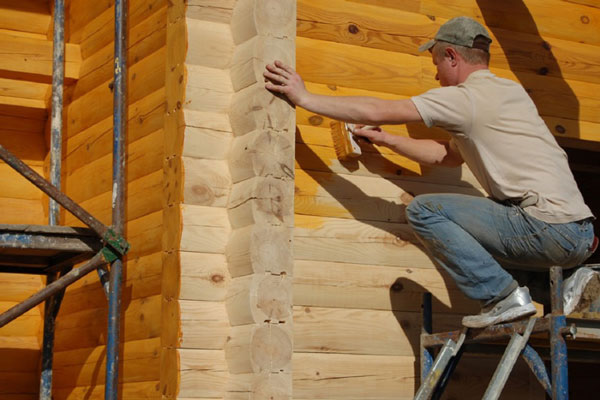 Самостоятельная биоогнезащита древесины