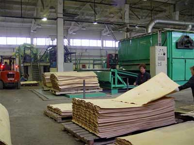 Цех по производству фанеры