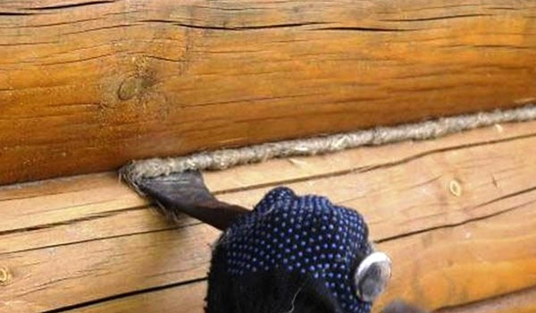 В качестве стальной лопатки можно использовать любое изделие с плоским, но прочным наконечником