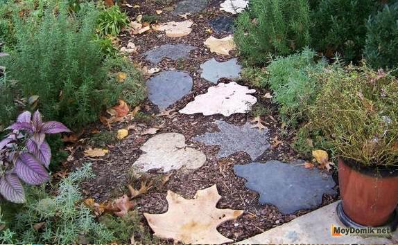 Вечная осень в вашем саду