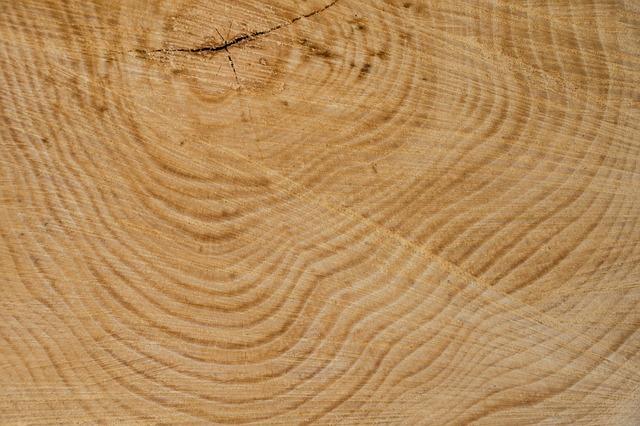 Древесина состоит из множества различных по плотности слоев.