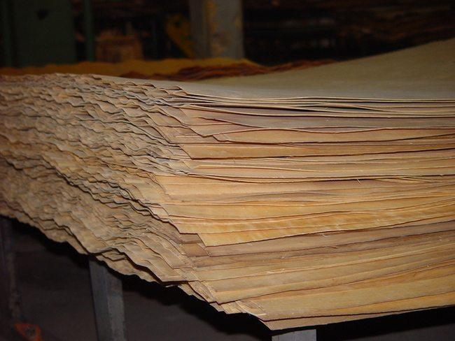 Древесный шпон для последующего изготовления фанеры