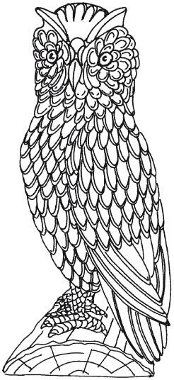 Эскиз рейной совы