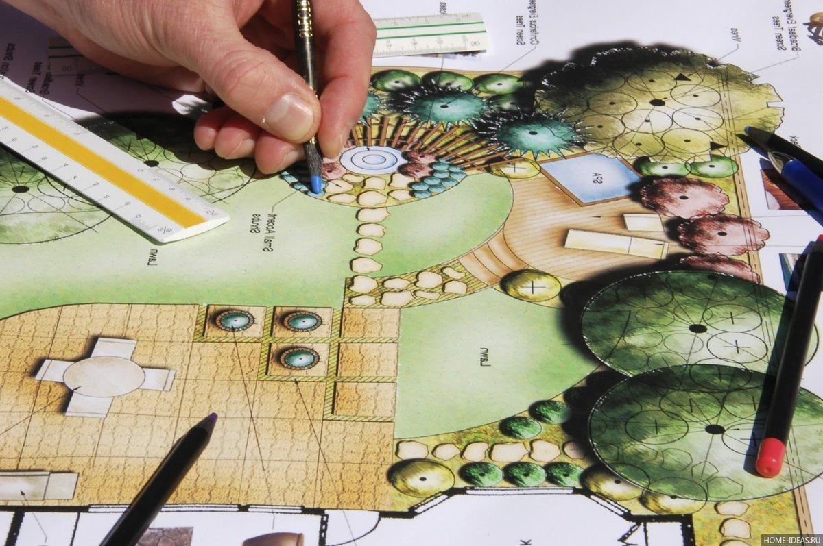 Дизайнеры перед переносом растений на постоянное место планируют их размещение сначала на бумаге