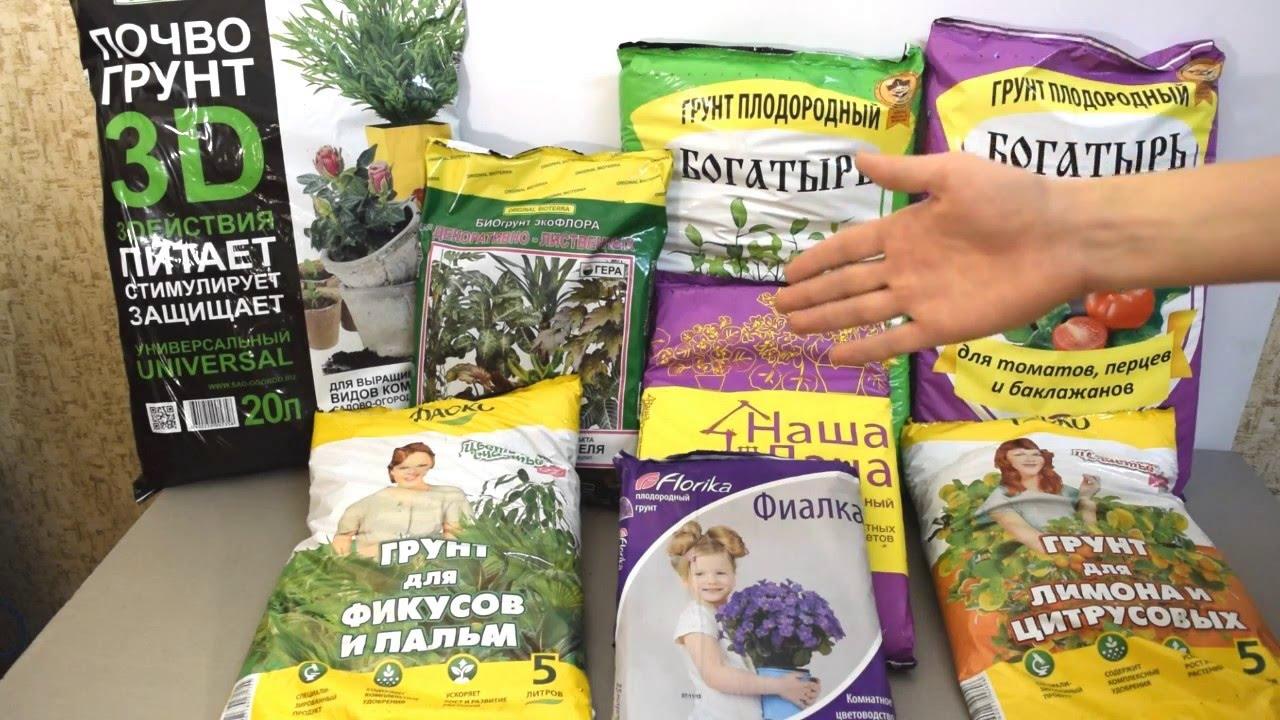 В цветочных магазинах можно выбрать подходящий сорт грунта