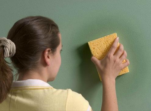 Водоэмульсионную краску лучше чистить сухой губкой