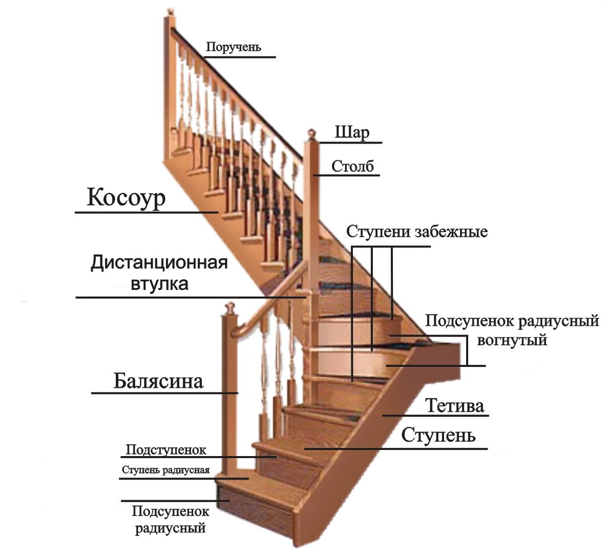 Конструкция лестницы из дерева с забежными ступенями