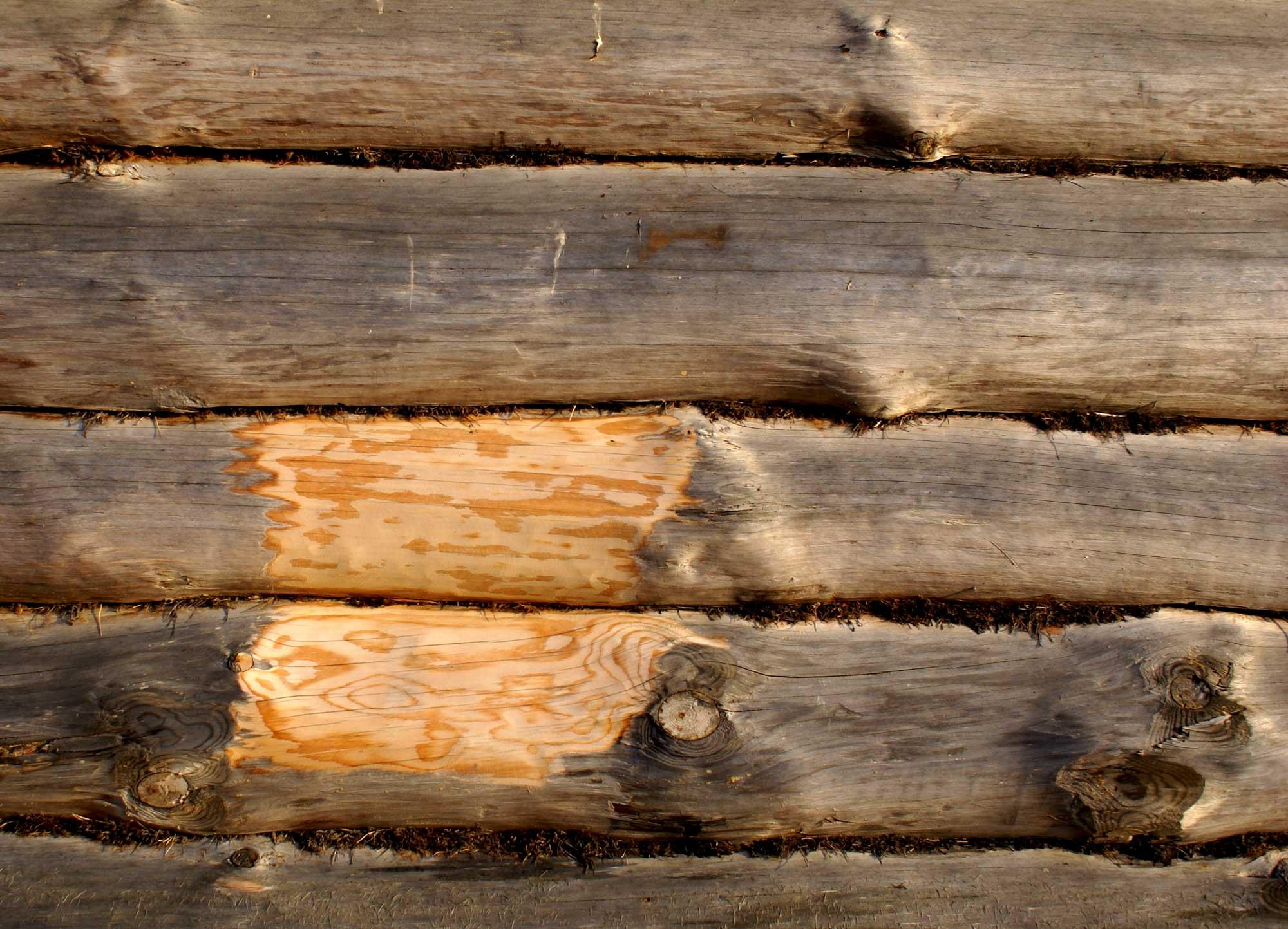 На фото- древесина в процессе обработки