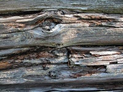Нафото - результат воздействия разрушающих факторов на деревянную поверхность.