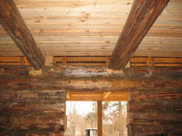 Несущие балки потолка бревенчатого сруба (нижняя обрешетка условно не показана).