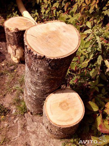 Пеньки, оставшиеся после ликвидации старого дерева, могут стать отличной основой для удобных стульев