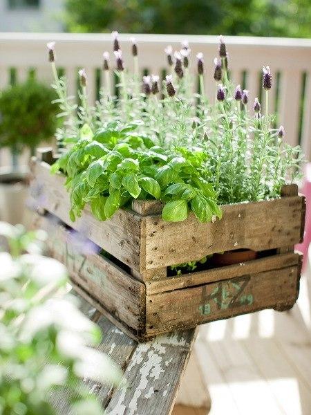 Подобные изделия прекрасно впишутся на любом участке, даже если вы не любите грядки и овощи, парочка таких коробочек не повредит