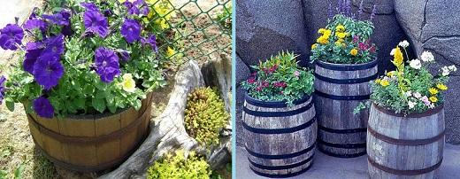 Пример цветников из бочек