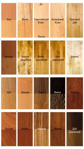 Распространенные породы дерева.