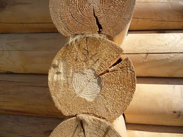 Результат использования сырого дерева