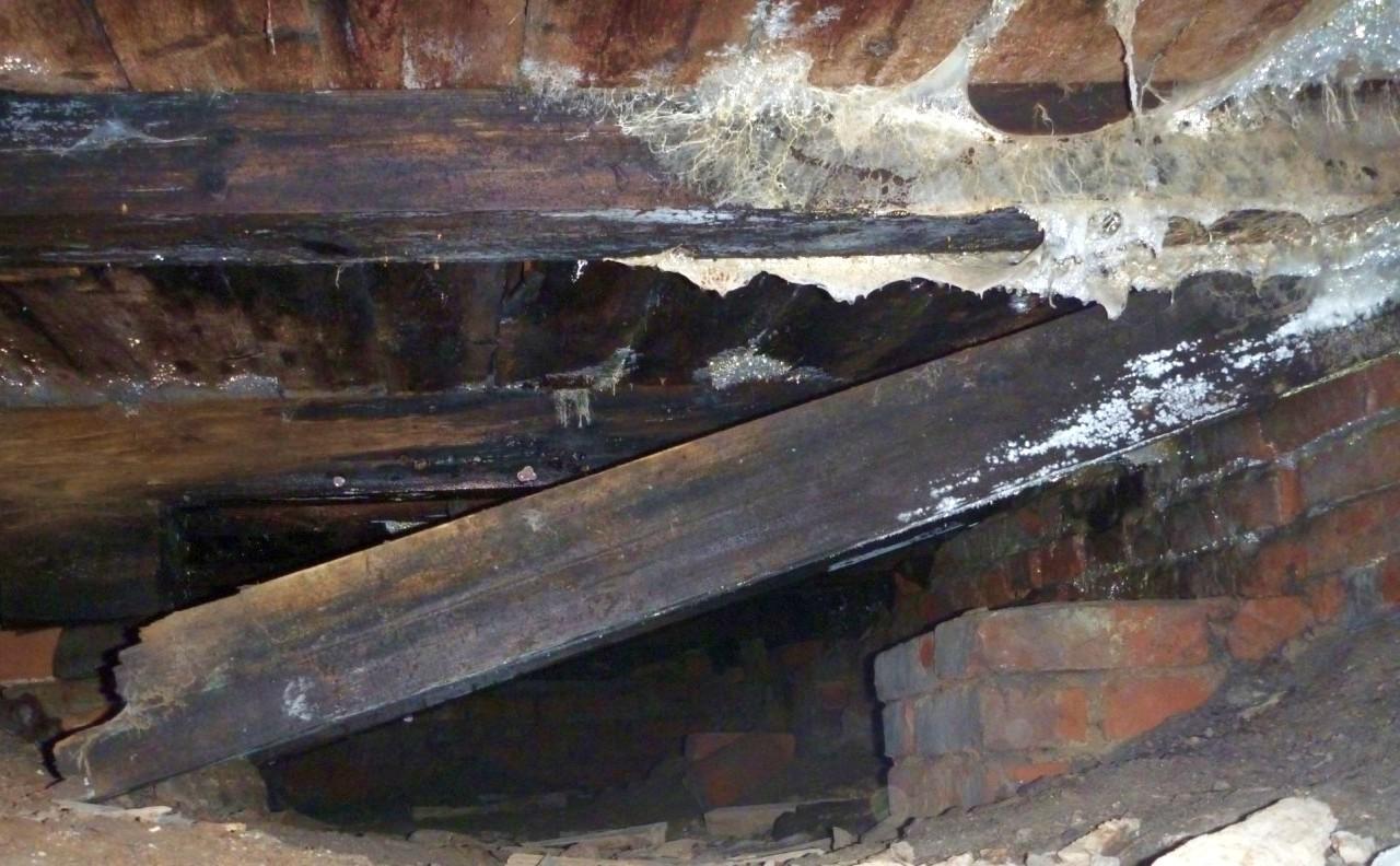 Результат воздействия чрезмерной влажности на незащищённую древесину