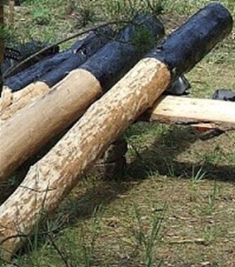 Точки соприкосновения бревен с землей следует защитить мастикой