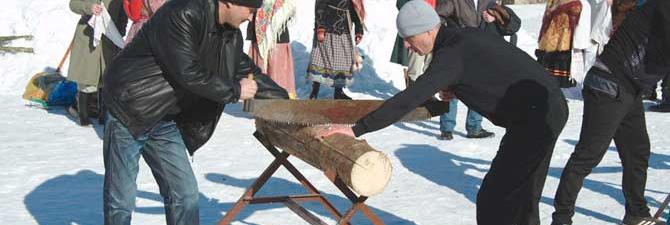 Заготовка дров двуручной пилой